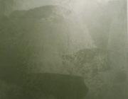 Фото,Декоративная краска с эффектом шёлка