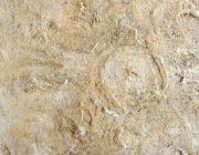 Травертино,фактурная штукатурка для имитации камня,фото